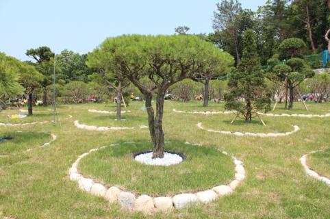 수목장,자연장 by 하늘세상