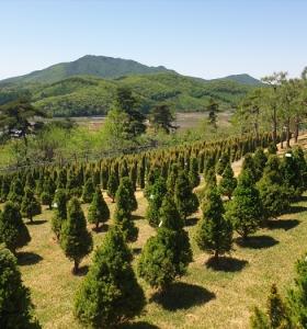 김포수목장 by 하늘세상